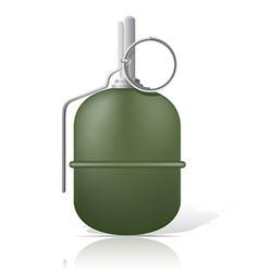 grenade 03 vector image vector image