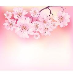 Beautiful sacura spring vector