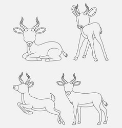 Cartoon impala thin lines collection isolated on w vector
