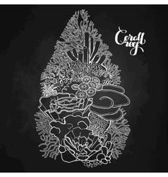 Coral reef design vector