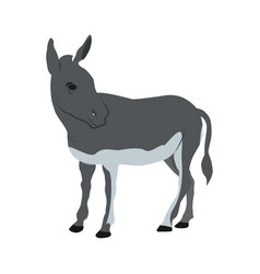 donkey funny cartoon vector image