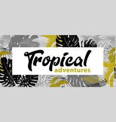 poster with tropical leaves in monochrome shades vector image
