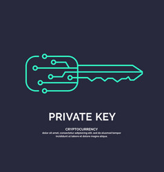 Private key for cryptocurrency global digital vector