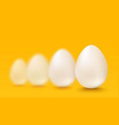 realistic white eggs vector image