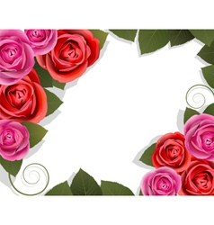Red and pink roses vector image