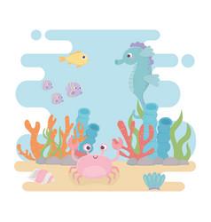Seahorse fishes crab life algae coral reef cartoon vector