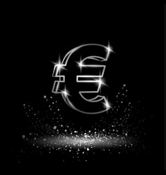 silver euro money symbol vector image