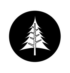 Tree plant pine isolated icon vector