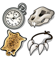 animal skull skin necklace of fangs and timer vector image vector image