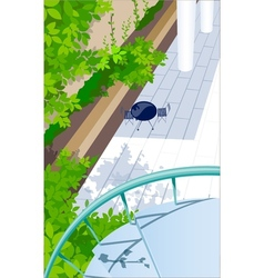 view from balcony vector image vector image