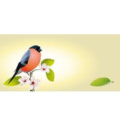 Vintage card with bird vector