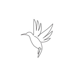 one continuous line drawing cute hummingbird vector image
