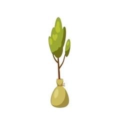 Seedling icon cartoon style vector