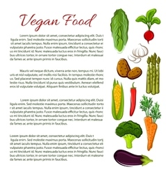 Vegan food infographics poster with vegetables vector