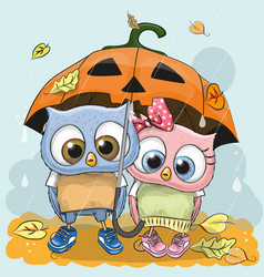 halloween card two cute cartoon owls vector image vector image