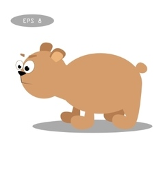 Brown bear isolate on white vector image vector image