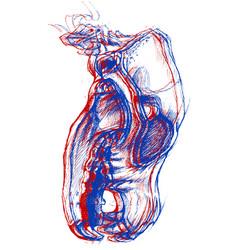 dog skull 3d vector image