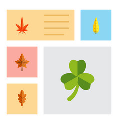 flat icon foliage set of maple linden alder and vector image