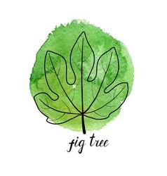 Leaf of fig tree vector