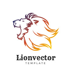 lion shield logo design template lion head logo vector image