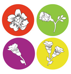 monochrome icon set with flowers vector image