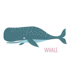 heavy oceanic whale childish cartoon character vector image