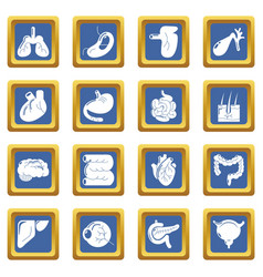 internal human organs icons set blue square vector image
