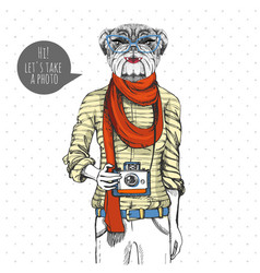 Retro hipster animal bulldog with photo camera vector