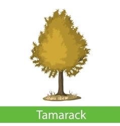Tamarack cartoon tree vector
