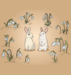 Two easter rabbits among snowdrops hand drawn vector