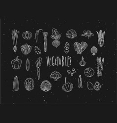 vegetables icons handmade line style black vector image