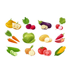 Vegetables set of colored icons green vegetable vector