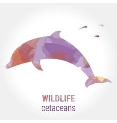 Wildlife banner - cetaceans dolphin vector