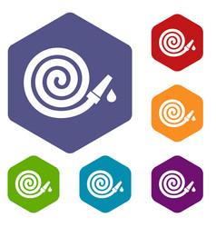 garden hose icons set vector image