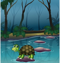 A turtle at the lake vector image vector image