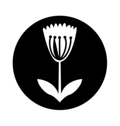 Cute flower nature icon vector
