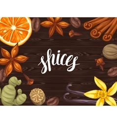 Background design with various spices vector image vector image