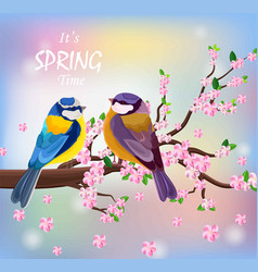 birds couple on a blossom cherry flowers vector image