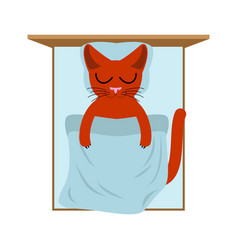 Cat sleeps in bed pillow and blanket sleeping vector