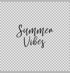 summer vibes transparent background vector image