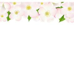 Apple Tree Flowers Border vector image vector image
