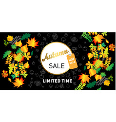 abstract autumn sale poster vector image