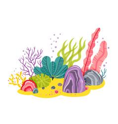 Background with ocean bottom corals reefs vector