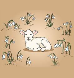 Cute lamb among snowdrops hand drawn colorful vector