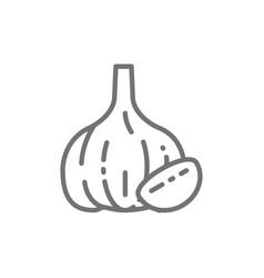 garlic spice line icon vector image