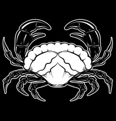 Hand drawn crab in realistic style isolated vector