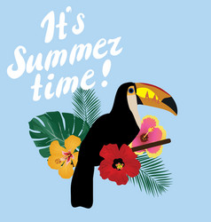It is summer time vector