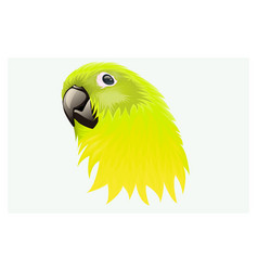 Yellowish green feathered parrot vector