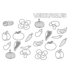 hand drawn vegetables set coloring book page vector image