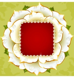 white rose circle frame vector image